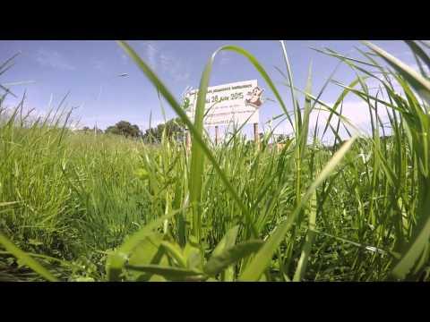 Trailer - Prez2015 - UCuksNSv06n0srAQfWCp_wiw