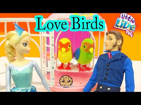 Little Live Pets LOVE Birds Talking Singing Interactive Toys with Frozen Queen Elsa - Cookieswirlc - UCelMeixAOTs2OQAAi9wU8-g