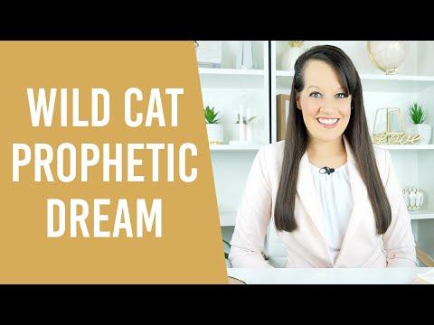 Prophetic Jaguar Dream