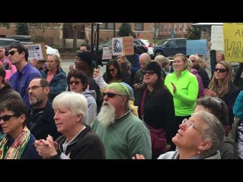 In response to an executive order banning Syrian refugees from entering theUnited States, protesters gathered in front of the post office on Franklin Street and at Raleigh-Durham International Airport.