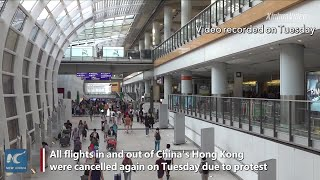 All flights in and out of Hong Kong airport cancelled again