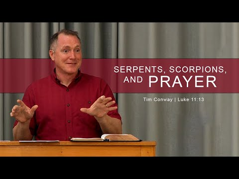 Serpents, Scorpions, and Prayer - Tim Conway