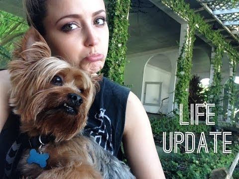 UPDATE- What's been going on?! - UC8v4vz_n2rys6Yxpj8LuOBA