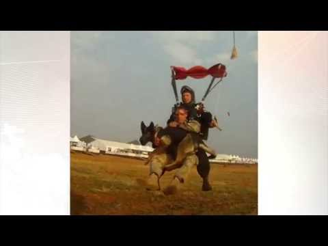Dùng chó nhảy dù ngăn săn trộm
