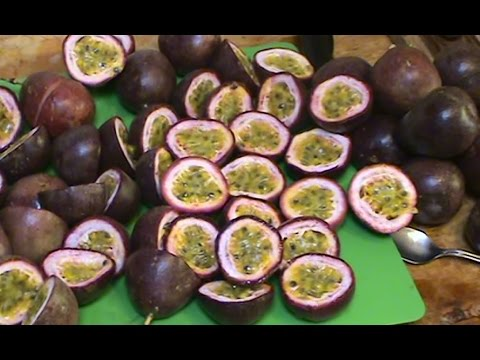 Processing Passionfruit for the Freezer & Making a Passionfruit Drink.