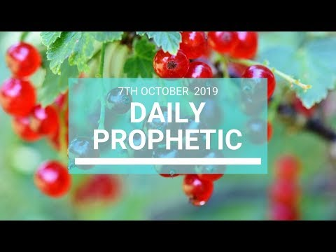 Daily Prophetic 7 October Word 7