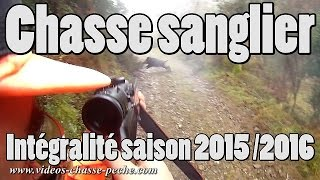 Chasse sanglier 2015 2016 - Saison Rasorback30