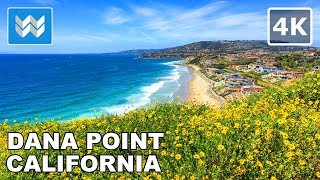 SUPER BLOOM 2019 Dana Point Headlands Trail & Harbor Point Park California | Walk Tour 🎧 【4K】