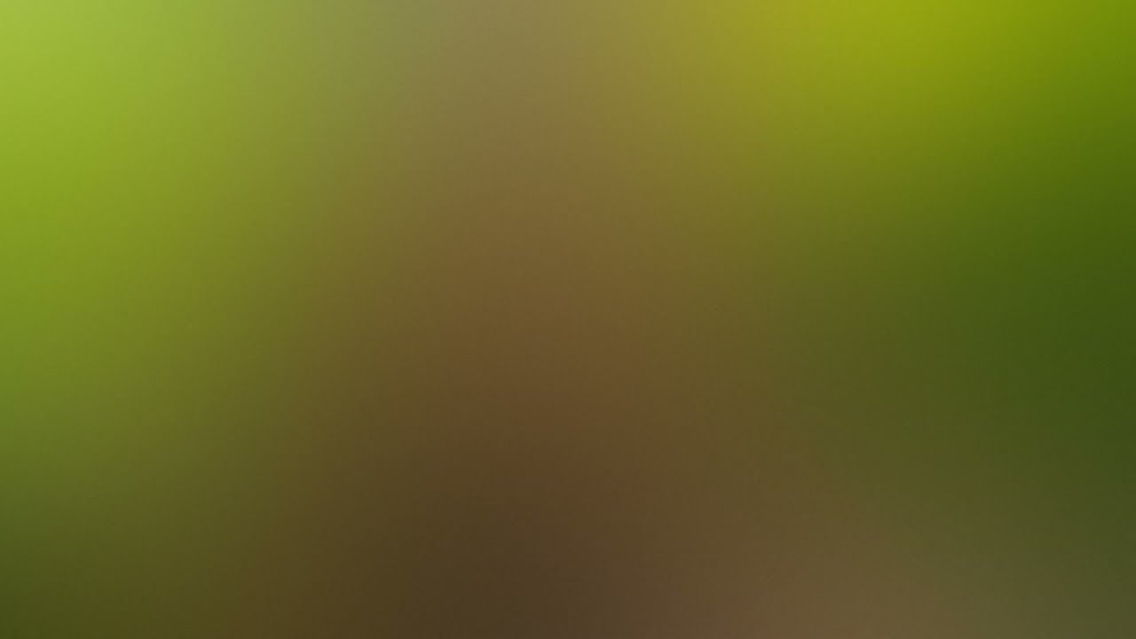 Alper Karacan –  Coco, Bass House, Bass Boosted, Official Audio, New Video Song 2021