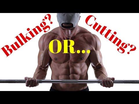 Bulking vs. Cutting (Why Not BOTH?) - UCOFCwvhDoUvYcfpD7RJKQwA