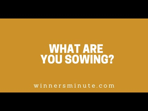 What Are You Sowing? // The Winner's Minute With Mac Hammond
