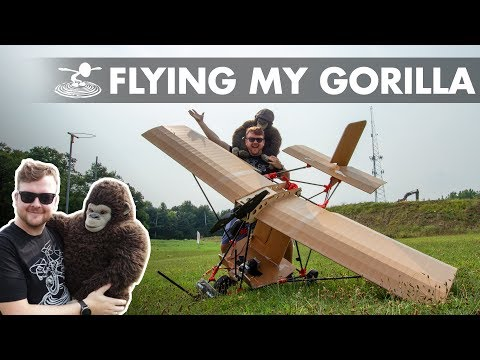 Sending my Gorilla to the Blue Yonder - UC9zTuyWffK9ckEz1216noAw