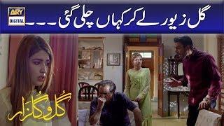 Gul Zewar Lekar Kahan Chali Gayi??   Best Scene   Gul O Gulzar.