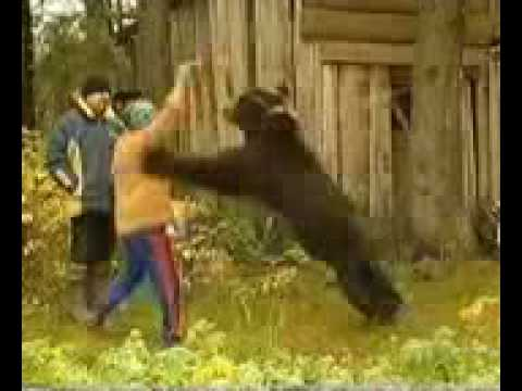 Russian Woman Survives A Bear Attack!