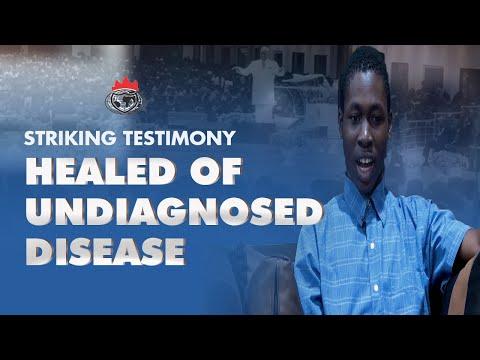 Striking Testimony: Stone in the Liver