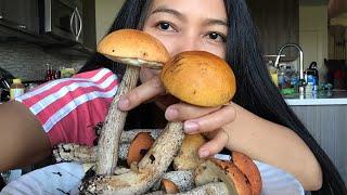 เจอขุมทรัพย์ใหม่ ดอกใหญ่กว่าหน้า Picking Wild Mushroom #คนรักเห็ด #เห็ดผึ้งขาลาย