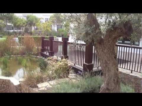Projectos de jardinagem algarve