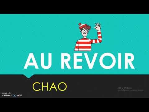 Saludos, despedidas, estados de animo y presentación en Francés.