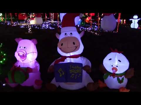 Amazing Backyard Christmas Display !!! We Made the Local Newspaper !!!