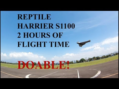 Reptile Harrier S1100 1 Hour in the AIR - UCHQc22t_e8i5ITkIivQg7Ww
