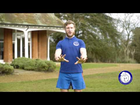 Mountain Climbers - Muddy Dog Challenge training exercises
