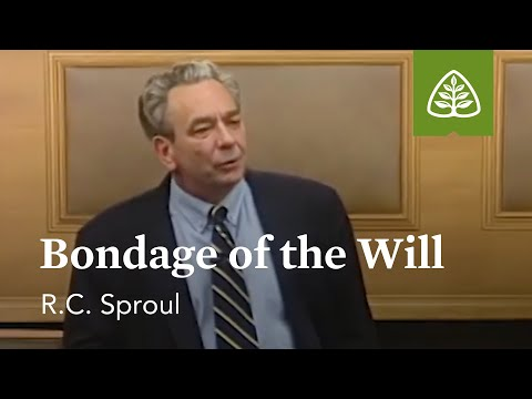 Bondage of the Will: Willing to Believe with R.C. Sproul