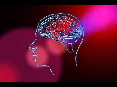 O houževnatosti podvědomí a rozumového vědomí (La ténacité de la conscience intellectuelle)