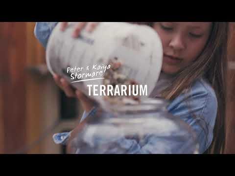 Gör det själv - Terrarium