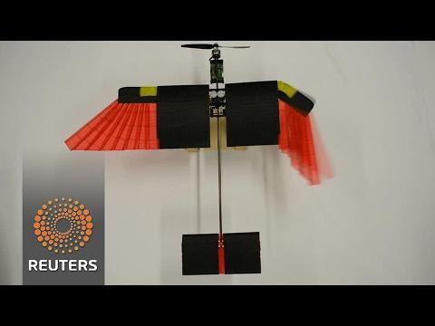 Feather drone mimics bird flight
