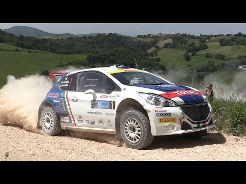 Rally Adriatico 2016: Peugeot 208 T16 e Andreucci – Highlight