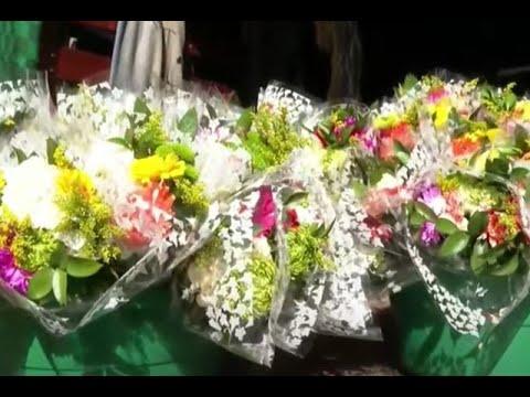 Se adelantó la Feria de las Flores: silleteros ofrecieron sus productos puerta a puerta en Sabaneta