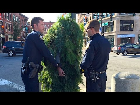 Guy DRESSED LIKE A TREE Gets Arrested In Maine | What's Trending Now