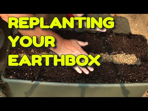 🍅 REPLANTING AN EARTHBOX 🌽 FALL GARDENING 🌿 PLANTING MIXED GREENS 🌱 🌾