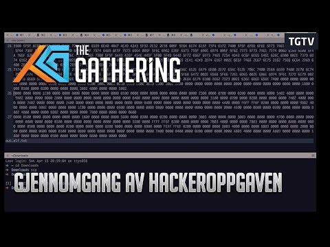 TG17: Gjennomgang av hackeroppgaven