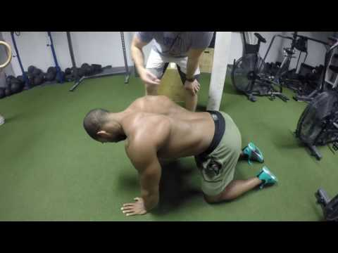 Scapular Circles: Scapular Mobility and Stabilization Training