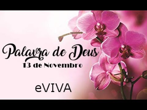 PALAVRA DE DEUS PARA HOJE 13 DE NOVEMBRO eVIVA MENSAGEM MOTIVACIONAL PARA REFLEXÃO DE VIDA