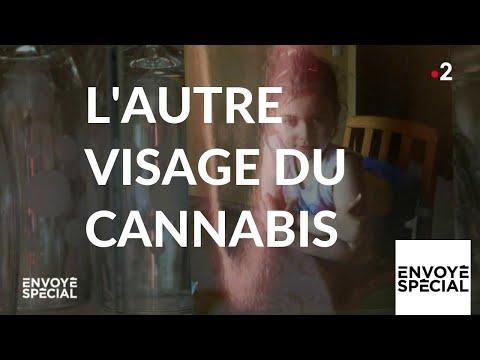 Nouvel Ordre Mondial - Envoyé spécial. L'autre visage du cannabis - 28 février 2019 (France 2)