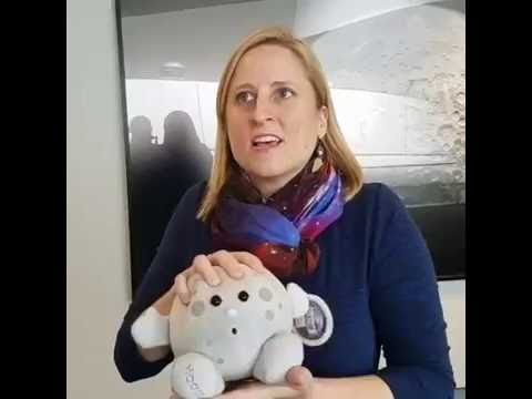 Moon Questions Answered With Astronomer Emily Rice