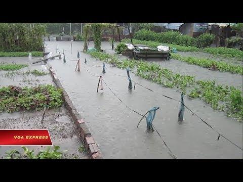 Tết buồn ở Lộc Hưng, Sài Gòn (VOA)
