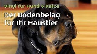 bodenbelag wohnzimmer hund, vinylboden für hunde & katzen von parkett-wohnwelt.de - youtube, Design ideen