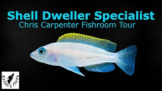 Shell Dweller Cichlid Fishroom Tour w/Chris Carpenter