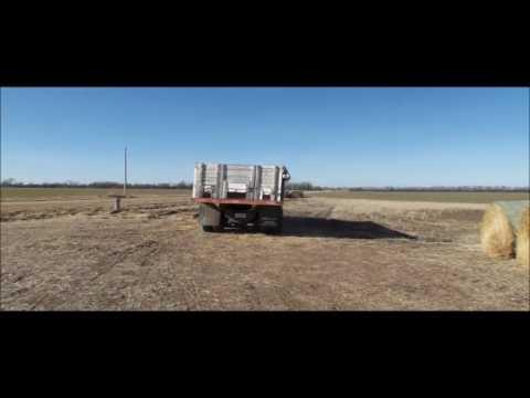 1970 Chevrolet C60 grain truck for sale | no-reserve Internet auction March 8, 2017