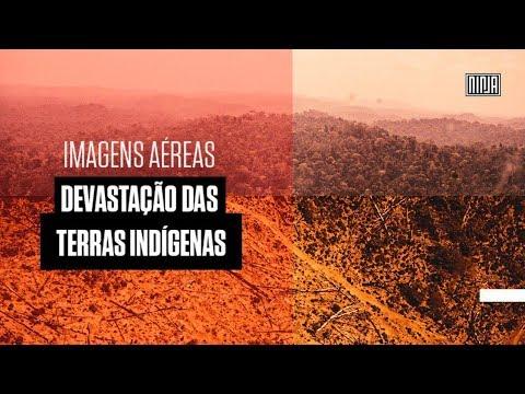 Sobrevoamos a terra indígena mais desmatada do Brasil em 2019