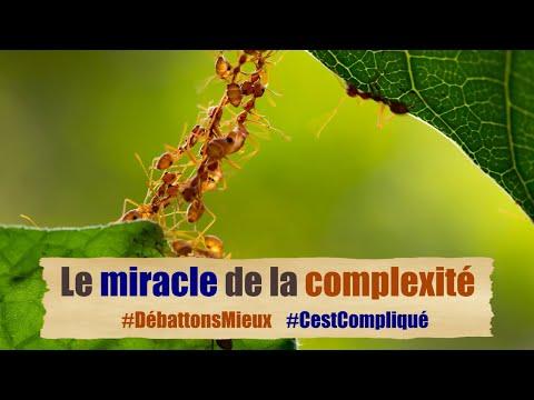 Le miracle de la complexité #DébattonsMieux