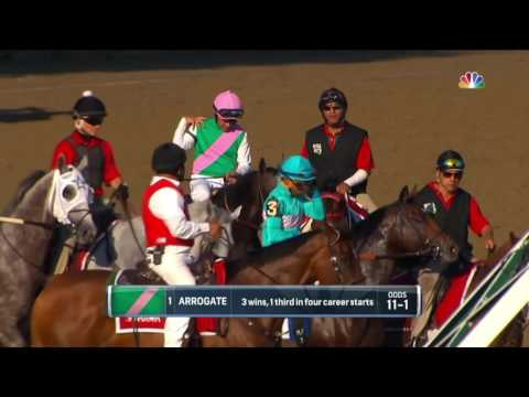 Arrogate: Longines World's Best Racehorse, 2016