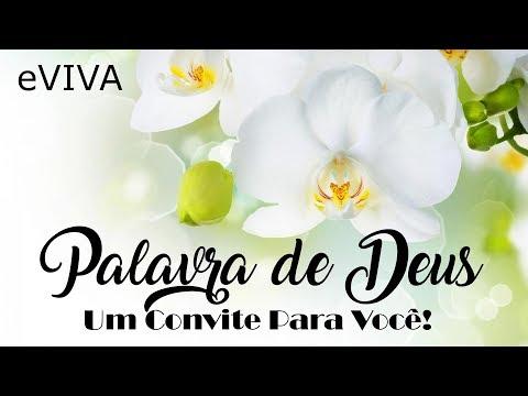 PALAVRA DE DEUS PARA HOJE 26 DE NOVEMBRO eVIVA MENSAGEM MOTIVACIONAL PARA REFLEXÃO DE VIDA