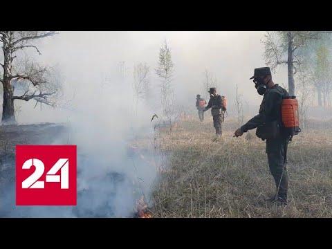 107 лесных пожаров потушено в России за сутки  