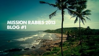 Mission Rabies Blog 1 - Goa