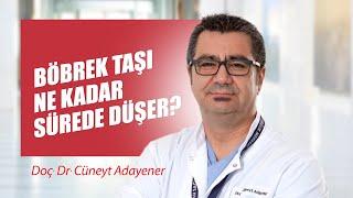 [Video] Böbrek taşı ne kadar sürede düşer? - Prof. Dr. Cüneyt Adayener