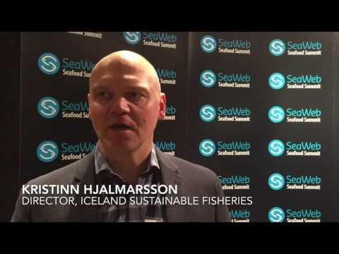 Icelandic exec talks fisheries sustainability